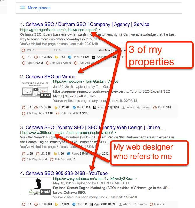 oshawa SEO Search results